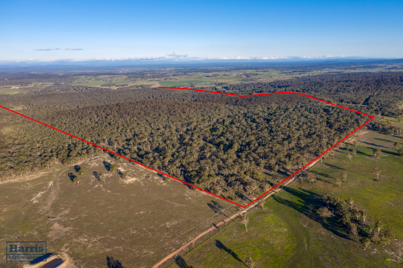 The Bush Block – Windellama Road Goulburn – CONTRACTS EXCHANGED
